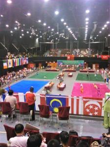 Международные соревнования по Ушу в Гонконге, 2014
