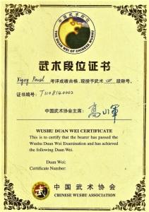 Сертификат на 4 дуань по УШУ Павла Нигей